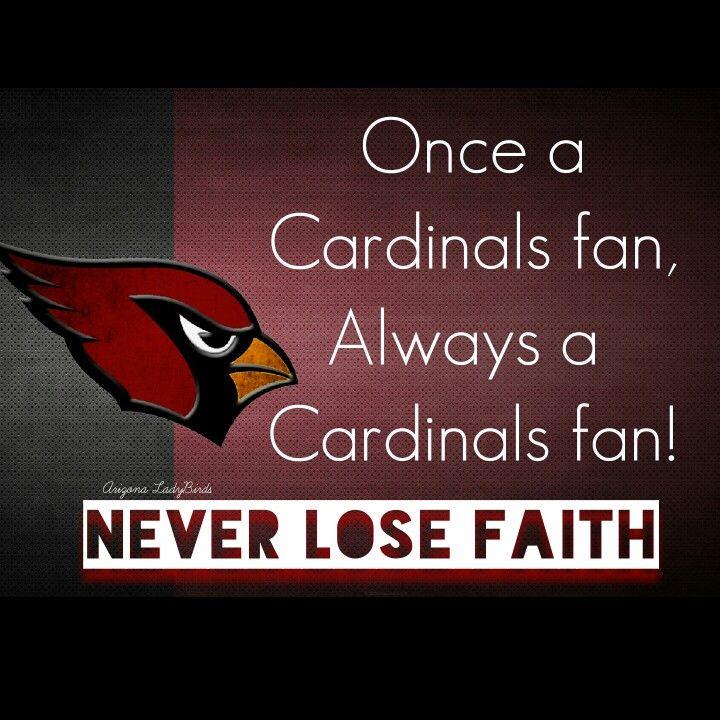 17 Best Images About Arizona Cardinals Fans On Pinterest
