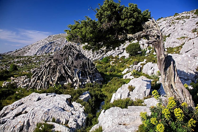 The Supramonte di Oliena   (by Andrea Loria, via Flickr)   This beautiful mountainous region is one of Sardinia's highlights, explore it and find out more at the following link:   http://www.sardegnaturismo.it/en/point-of-interest/supramonte-di-oliena