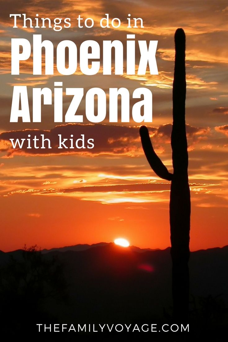 Going to Phoenix with the family? Make sure to read through our post highlighting the best things to do in Phoenix and Scottsdale with kids. #travel #familytravel #phoenix #scottsdale