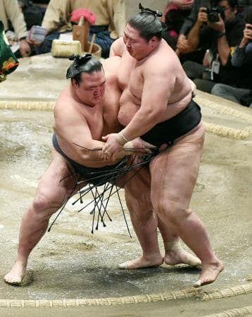 大関稀勢の里、初優勝 横綱昇進の可能性も #相撲 #sumo