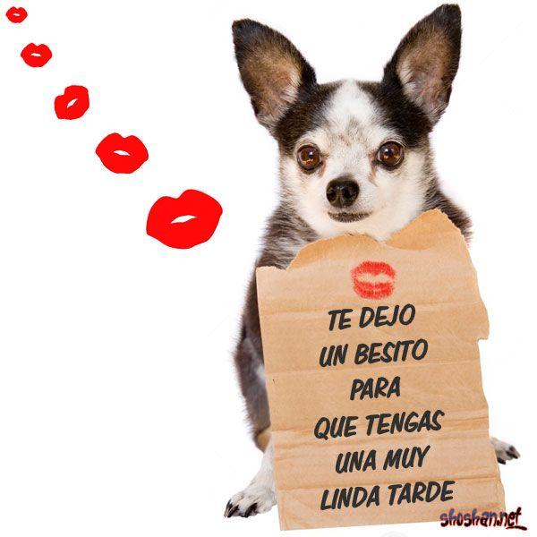 Imágenes con frases de buenas tardes para compartir: Te dejo un besito para que tengas una muy linda tarde
