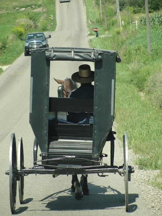 193 Best Images About Amish Ppl Anything Amish On Pinterest Amish Country Ohio Auction And