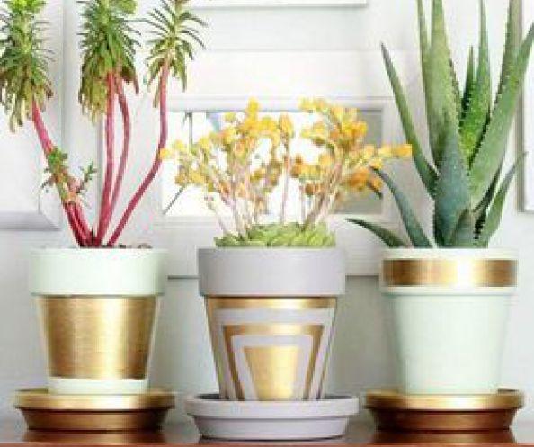Se amate le piante e i fiori uno degli oggetti che non possono mancare in casa vostra sono i vasi, e con ogni probabilità ad ogni cambio di stagione vorreste averne dei nuovi. I contenitori per le …
