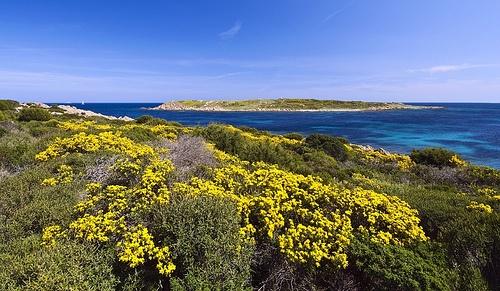 Isola della Pecora, (OT)