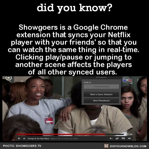 did-you-kno:  Showgoers is a Google Chrome extension that lets you sync your Netflix player with yourfriends' so that you can watch the same thing in real-time. Clicking play/pause or jumping to another scene affects the players of all other synced users.    Source   Ummmmm.  Shit just got real