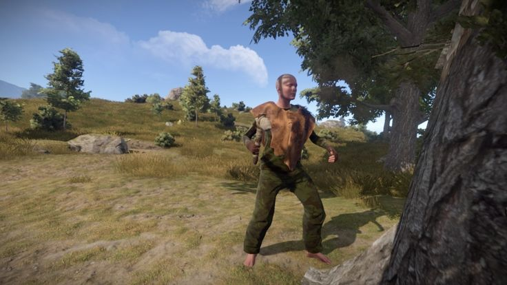 Rust video game players outraged after half given female avatars