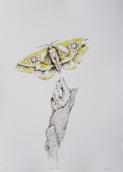 Drawing by Judith Mason