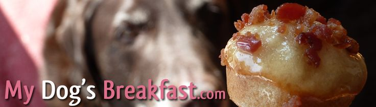 My Dog's Breakfast   Delicious Home Cooked Dog Food and Dog Treat Recipes. This site is awesome! There is nothing hard or expensive about feeding our dogs a better diet!