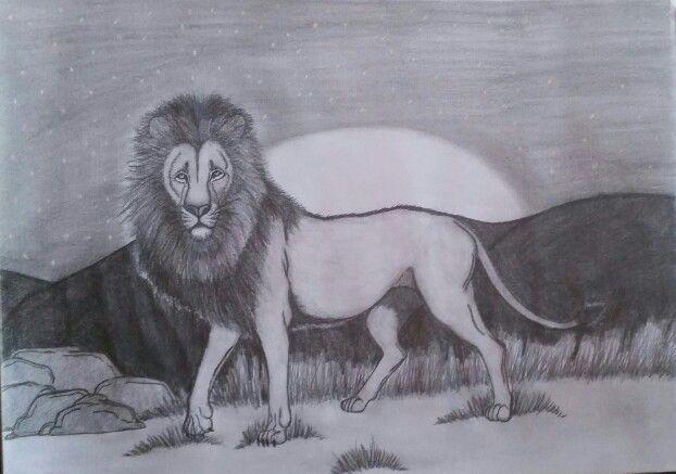 Thr Lion