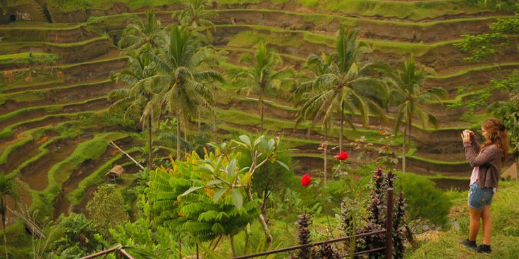 Bali Tour :: Lizmala Bali Tours