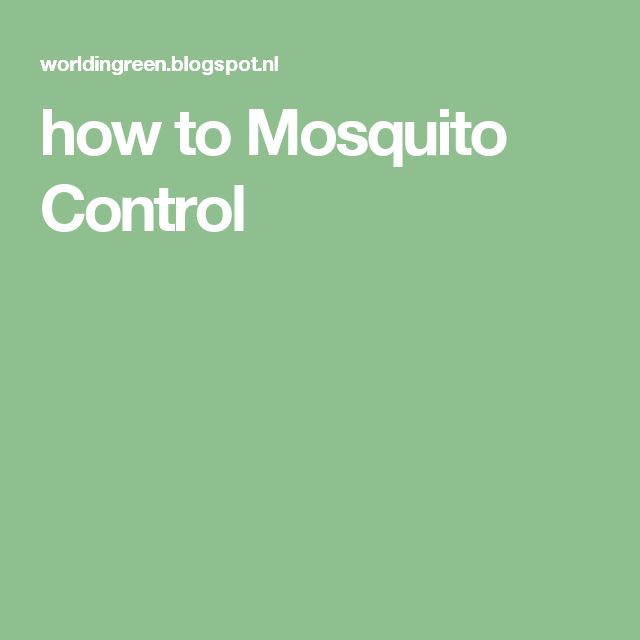 how to Mosquito Control