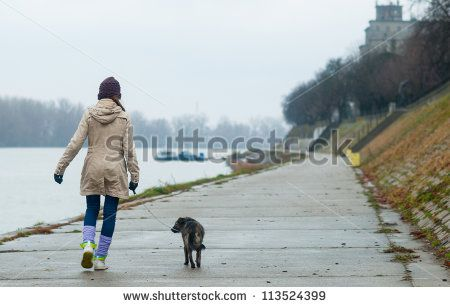 Dogs Stock Photos, Images, & Pictures   Shutterstock