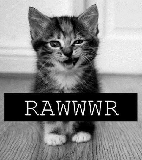 #RAWR