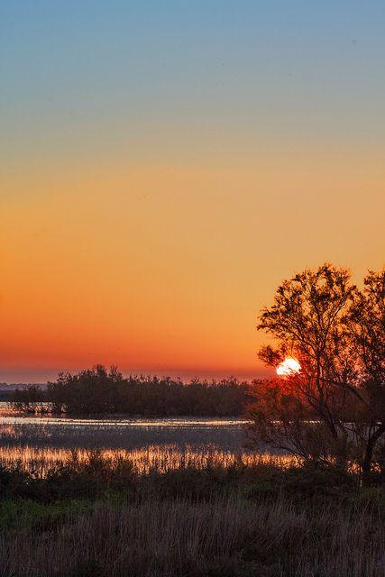 Atardeceres de Andalucía. Aquí, en el Parque Nacional de Doñana (Huelva) / Sunsets in Andalucía. Here, the one in Donaña National Park (Huelva)