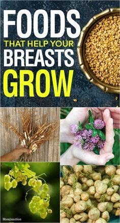 6 Foods That Help Your Breasts Grow : Breast enhancement is one of the most soug…