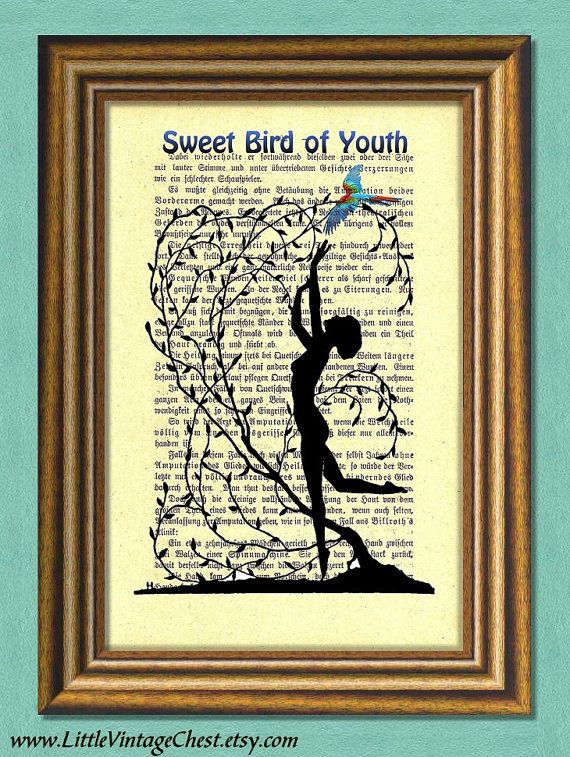 SWEET BIRD Of YOUTH  Dictionary art print  by littlevintagechest, $7.99