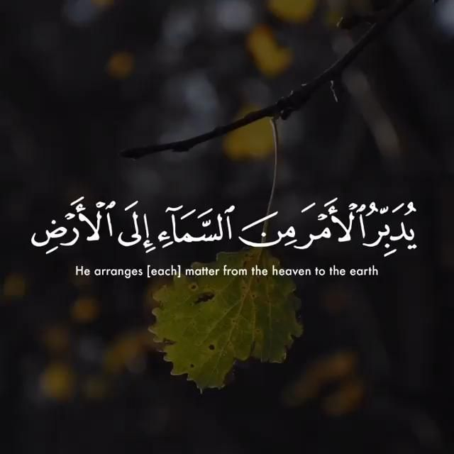 As Sajdah 6 5 Video Quran Quotes Love Quran Quotes Beautiful Quran Quotes