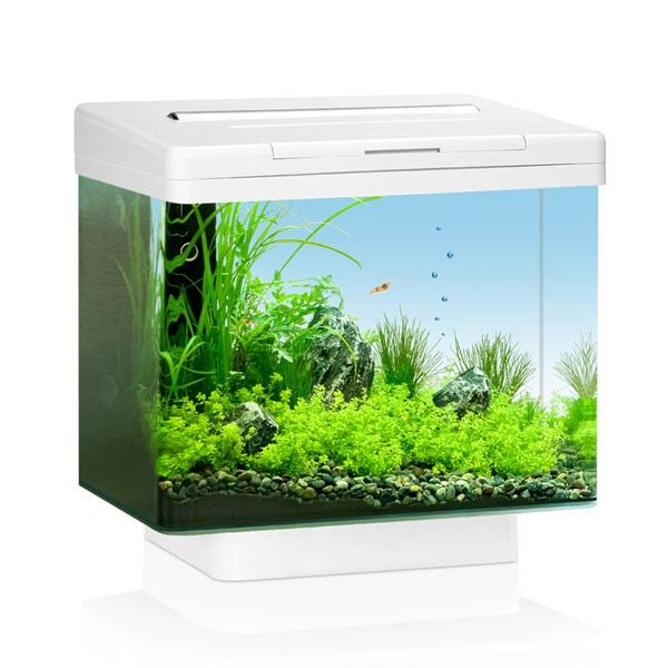 Juwel Aquarium Vio 40 LED in Weiß