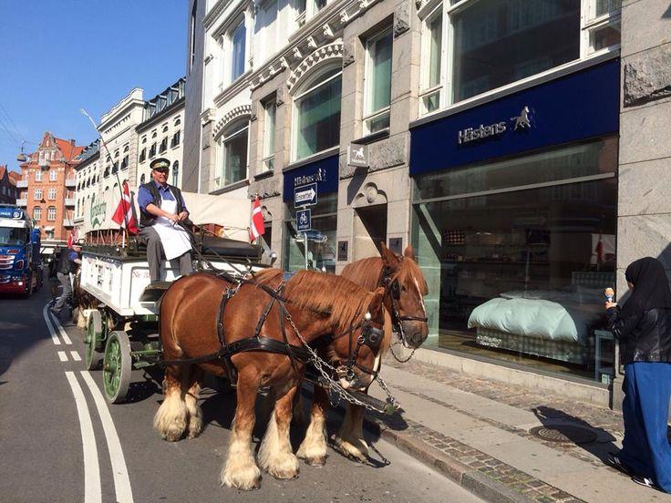 Hästens in Copenhagen!