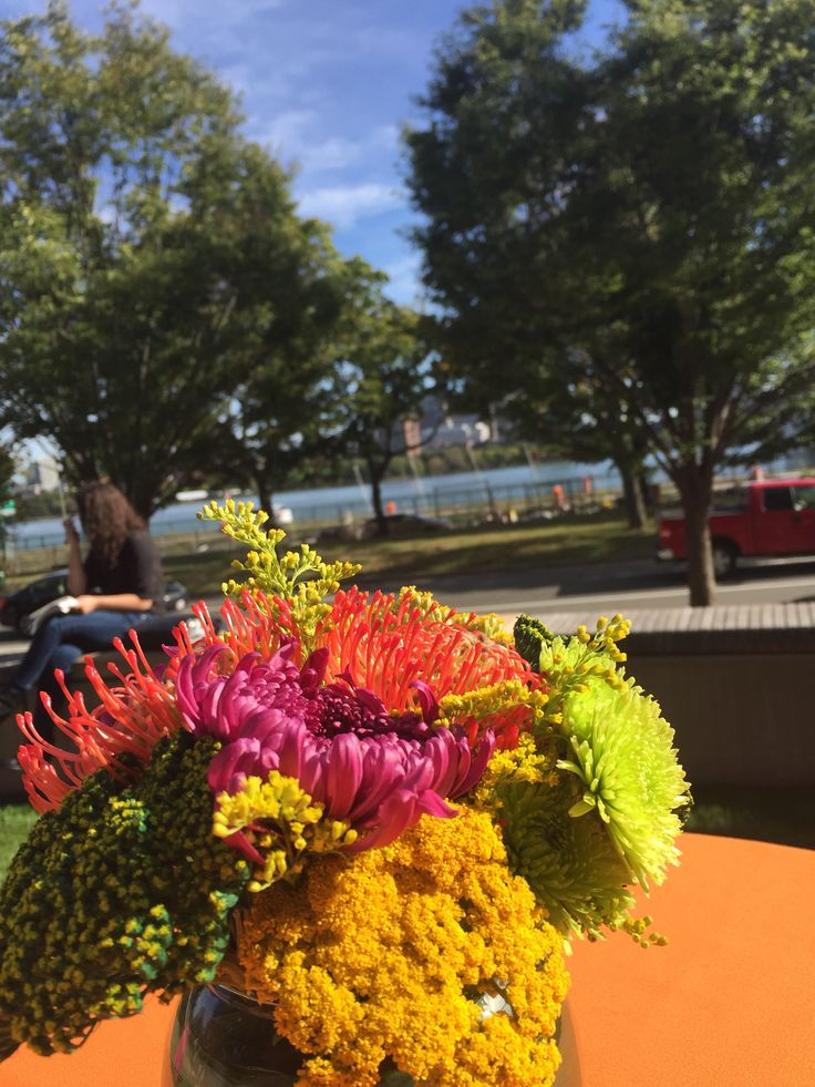 Amazing day playing a #Facultylunch at #MIT on the #CharlesRiver.  Add some #LiveMusic to your next event!