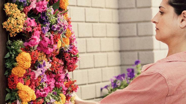 C mo crear un jard n vertical plantas pinterest - Como crear un jardin ...