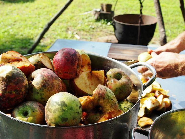 Koolhydraatarme appelmoes is prima zelf te maken en een smakelijke vervanger voor de appelmoes die je gewend was.