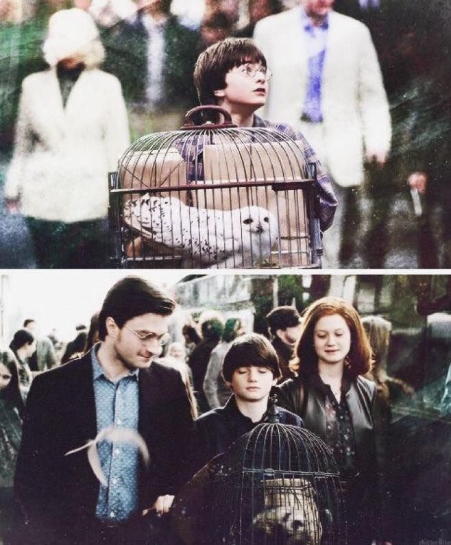 And at last, Harry Potter had a family.. *cries*