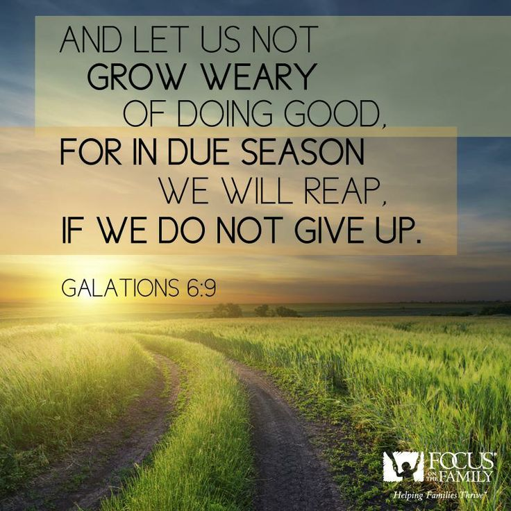 Galatians 6:9 (ESV)  9 And let us not grow weary of doing good, for in due season we will reap, if we do not give up.