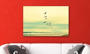 Groupon - Robin Dickinson Springtime Photographic Prints in [missing {{location}} value]. Groupon deal price: $24.99