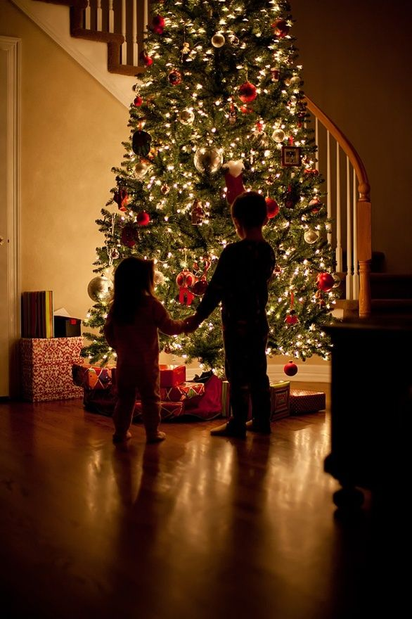 beautiful picture - children with Christmas tree