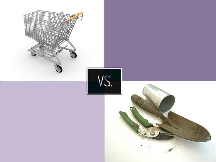Kupované nebo vypěstované ovoce a zelenina? | Poznej rozdíl
