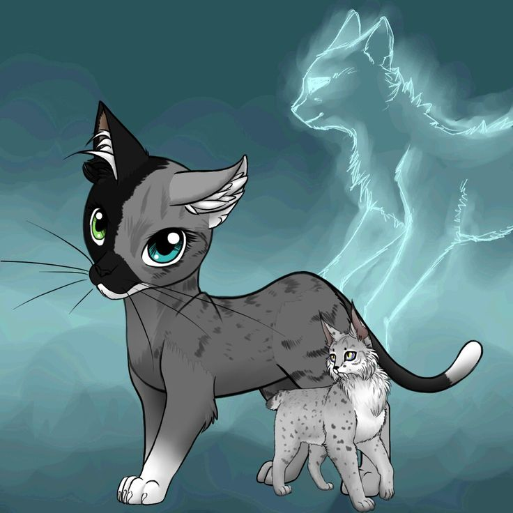 Leader 4:Midnightstar Her parents:cherrynose And Moonclaw. Her kits : Lynxfur. Her born in:Moon clan.