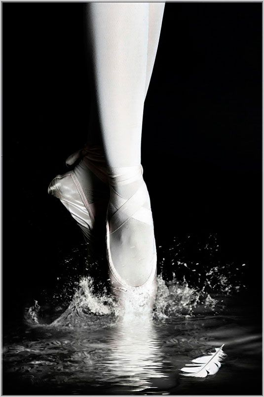 """""""Impressions of Swan Lake, the classic Tchaikovsky ballet."""" Smithsonian.com Photo of the Day: August 09, 2012. Taken by Gabor Dvornik."""