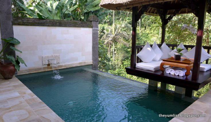 47 best plunge pool images on pinterest small swimming for Self sustaining pool