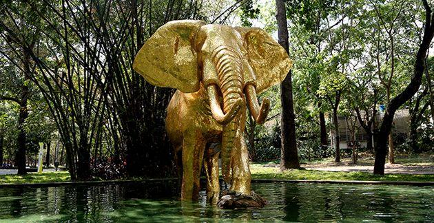 """El Parque Los Caobos exhibe la nueva escultura """"Elefante Dorado"""": es un símbolo de """"perseverancia y paz"""""""