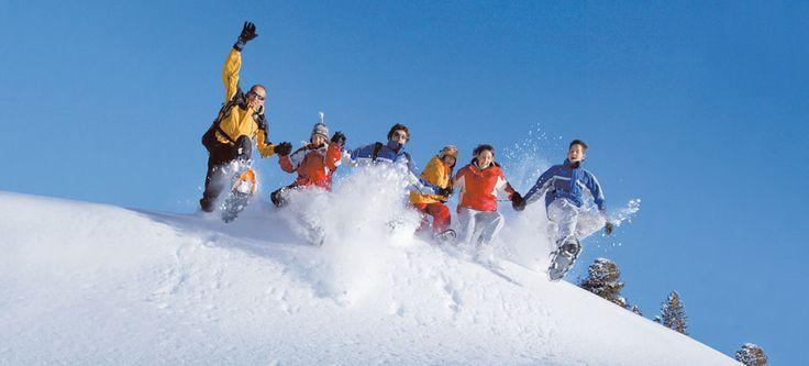 Your best bet for better odds! #WinterSportsbetting from Playdoit.com