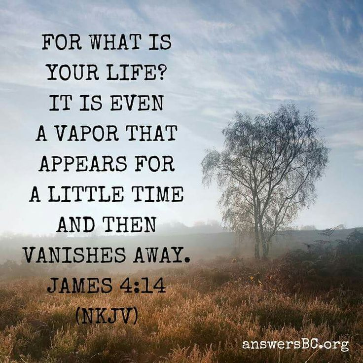 James 4 14 Bible Study Inspirational Bible Quotes