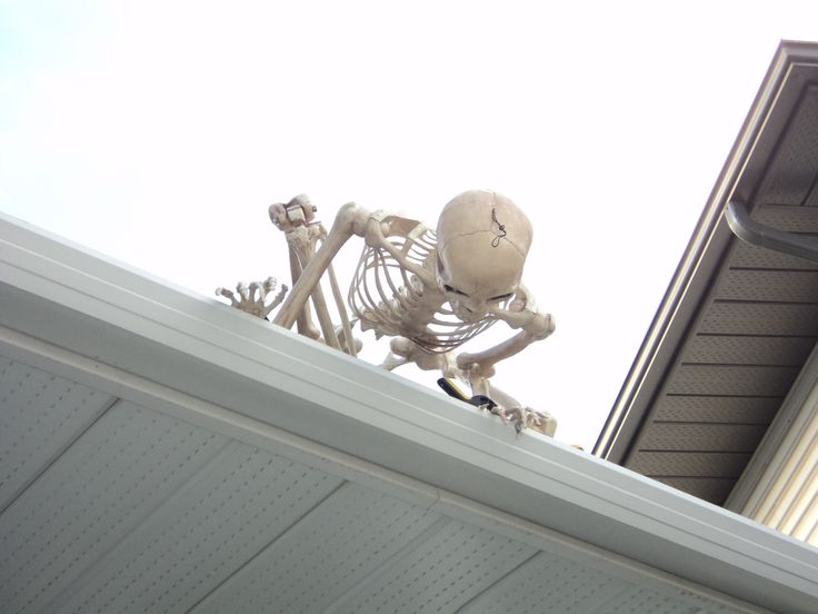 Hello down there!   This is the skeleton on the porch roof I will let my husband…