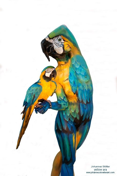 See and enjoy photos of bodypaintings by Johannes Stötter, which are grouped into various themes in the Fine Art Bodypainting Gallery.