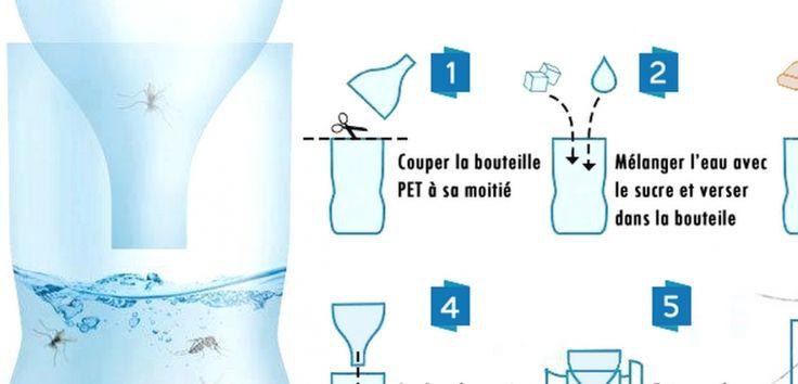 Les 25 meilleures id es de la cat gorie bouton de moustique sur pinterest bouton moustique - Piege a frelon maison ...