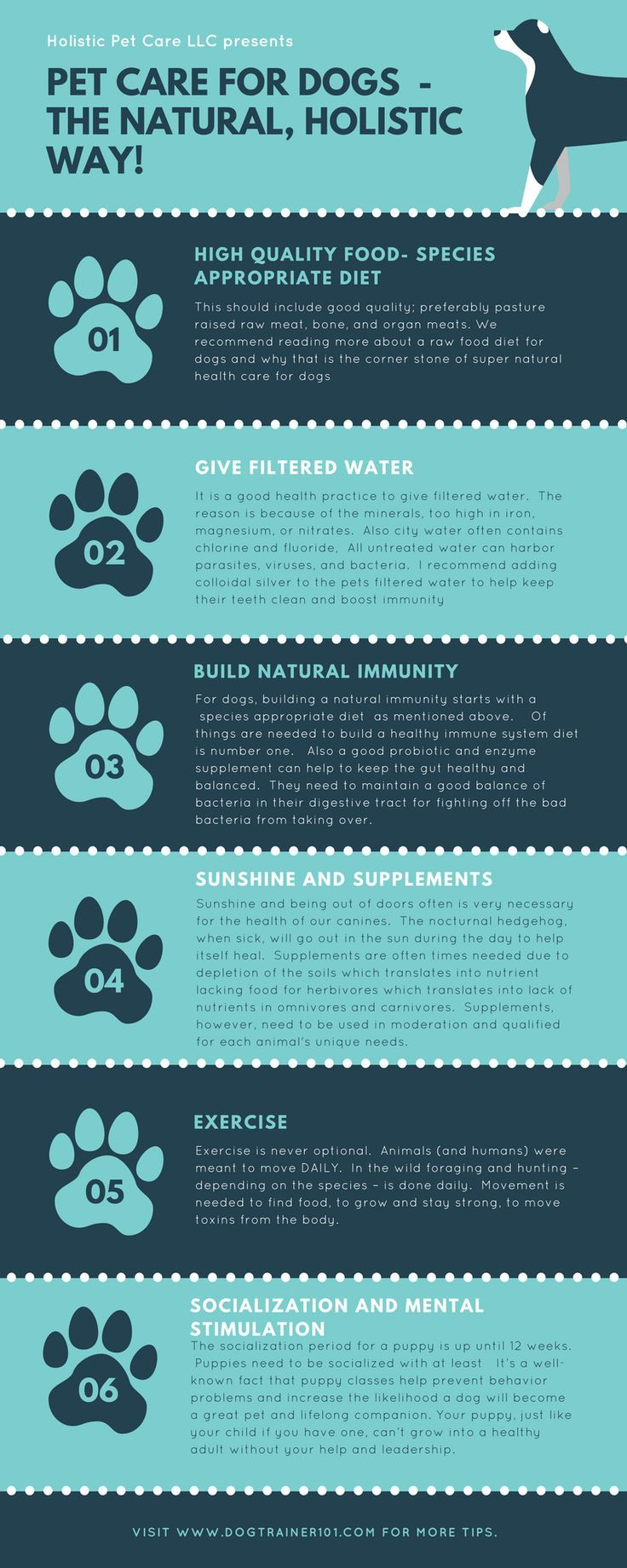 202 best Raw Dog Food images on Pinterest   Dog care, Dogs and Food ...