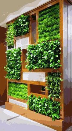 8 Porch Herb Garden Ideas You Would Like to Try