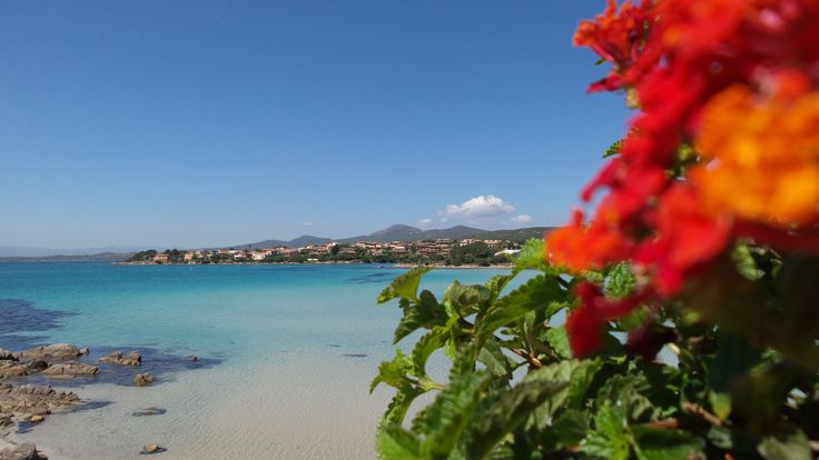 Hotel Gabbiano Azzurro - Golfo Aranci Hotel 4 stelle con vista mare, diverse tipologie di camere e spiaggia privata