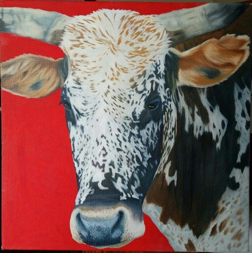 Nguni, oil on canvas. SOLD