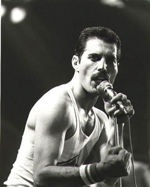 Freddie Mercury- (born Farrokh Bulsara; Gujarati: ફરોખ બલ્સારા‌, Pharōkh Balsārā‌); 5 September 1946 – 24 November 1991) British musician, singer and songwriter, best known as the lead vocalist and lyricist of the rock band Queen.  The official cause of death was bronchial pneumonia resulting from AIDS.