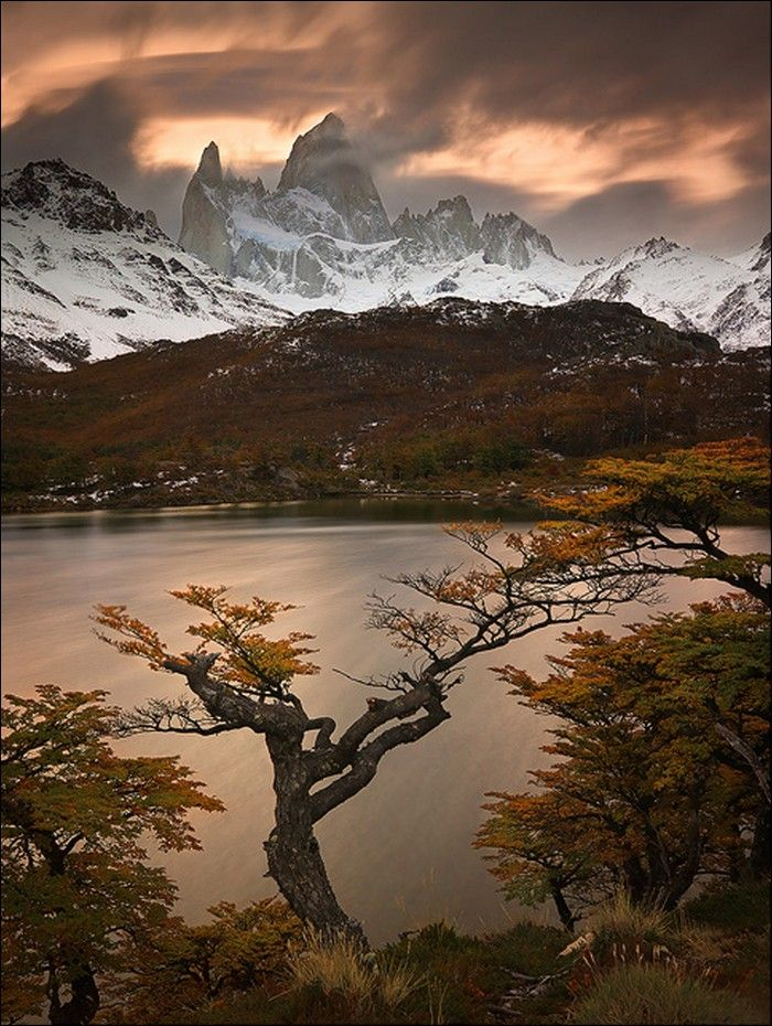 Laguna Capri, Los Glaciares National Park - Lake Capri, The Glaciers National Park, Argentina. The Fitzroy towers over Laguna Capri and the golden Lenga forest.