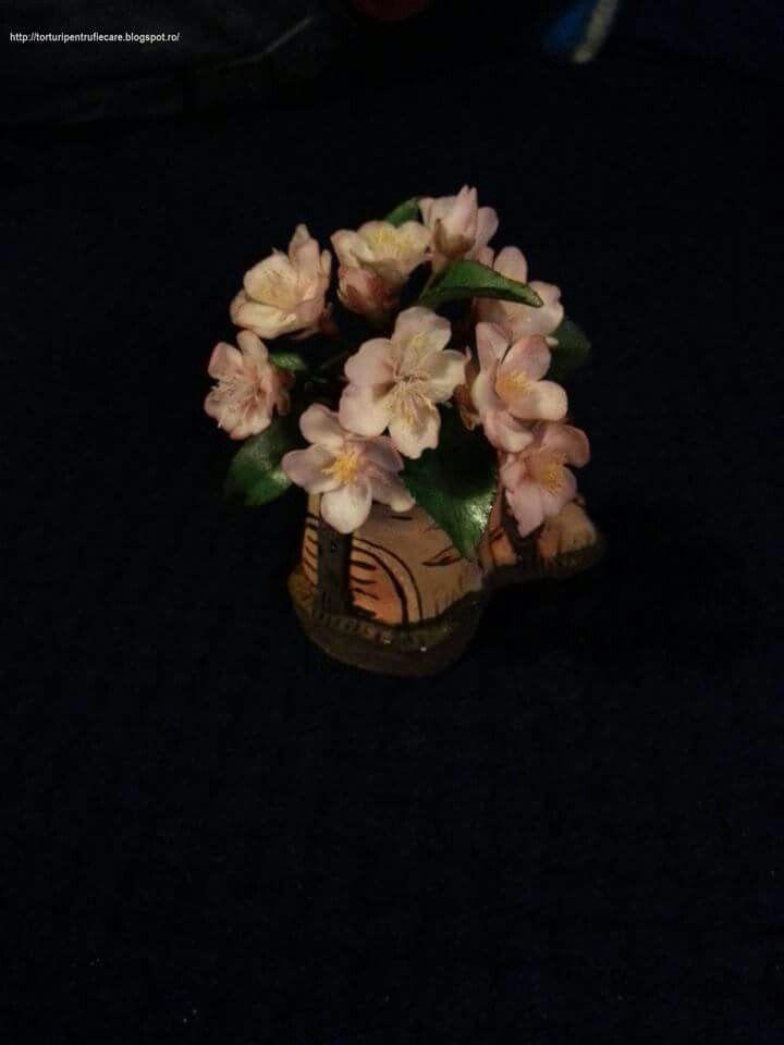 flori de mar