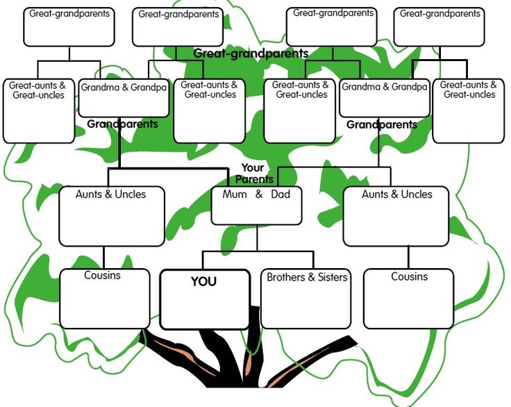 18 Best School Projects Images On Pinterest Family Trees