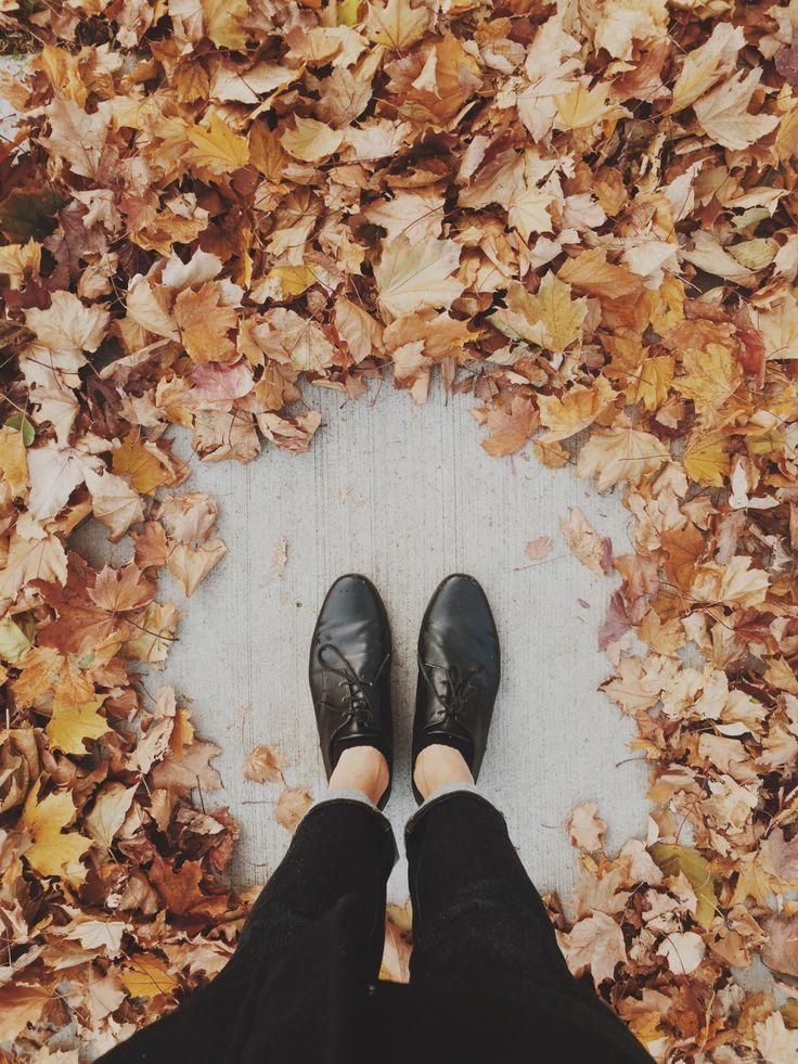 autumn is coming! artsy pictures for portfolio, instagram, vsco, etc.
