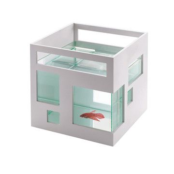 Fishhotel Fishbowl White now featured on Fab.Fish Hotels, Fish Tanks, Aquariums, Pets, Umbra Fishhotel, Fishbowl, Products, Design, Bowls
